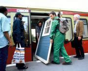 Ahorn und Buche treffen sich Unter den Linden / TranspOrtale